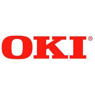 Oki Speichererweiterung 256 MB für C330dn/C530dn/C610/C711/6410dn