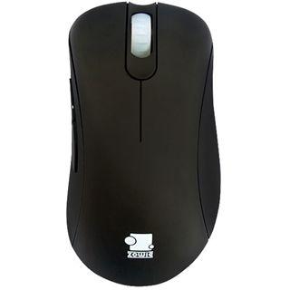 ZOWIE EC2 eVo Pro Gaming Mouse USB schwarz (kabelgebunden)